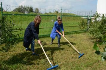 В рамках пятой трудовой четверти рабочие места нашлись для 9 тысяч алтайских школьников (видео)